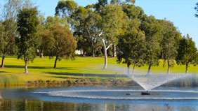 Suitable for large 